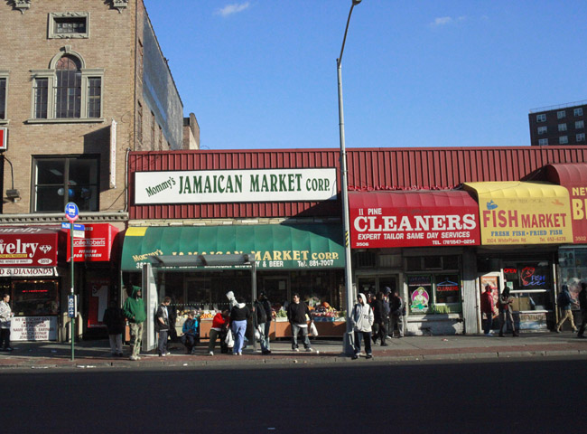 Markets and stores on White Plains Rd.