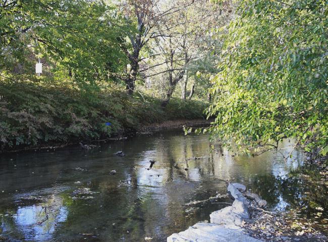 River along Shoelace Park
